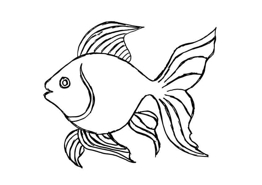 Tổng hợp những bức tranh tô màu đẹp nhất cho bé cá vàng