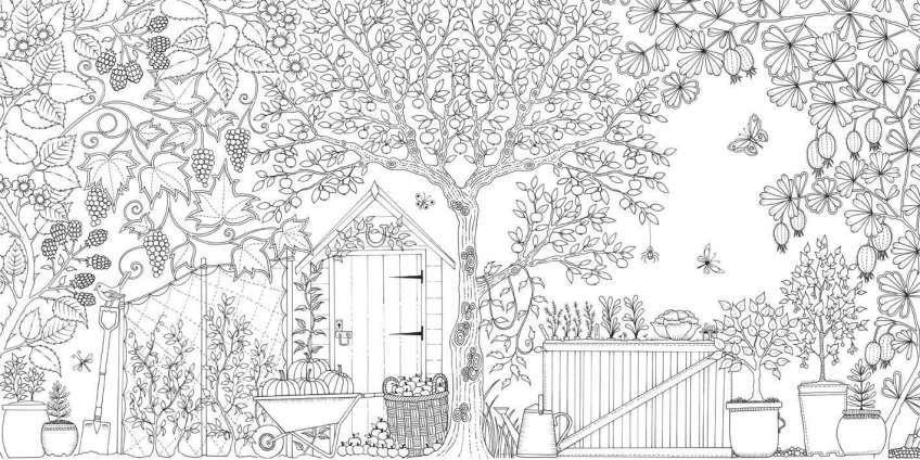 Tổng hợp tranh tô màu khu vườn bí mật hấp dẫn nhất