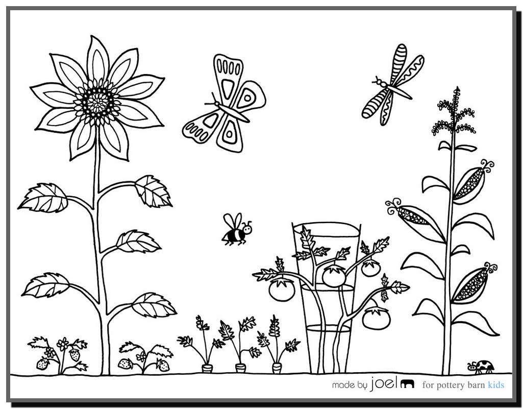 Tổng hợp tranh tô màu hoa mai đẹp nhất cho bé yêu