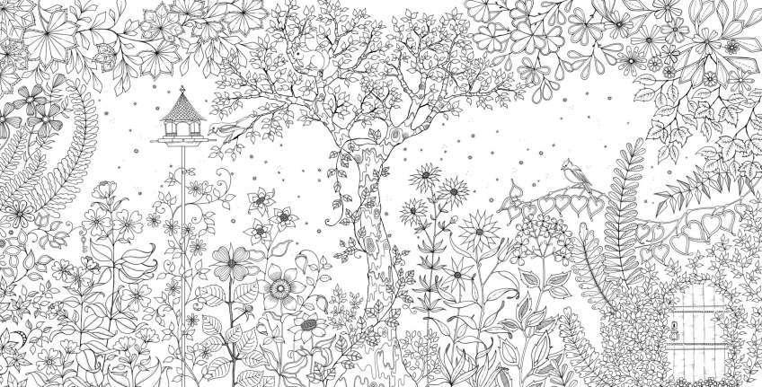 Tổng hợp những bức tranh tô màu khu vườn bí mật hấp dẫn nhất