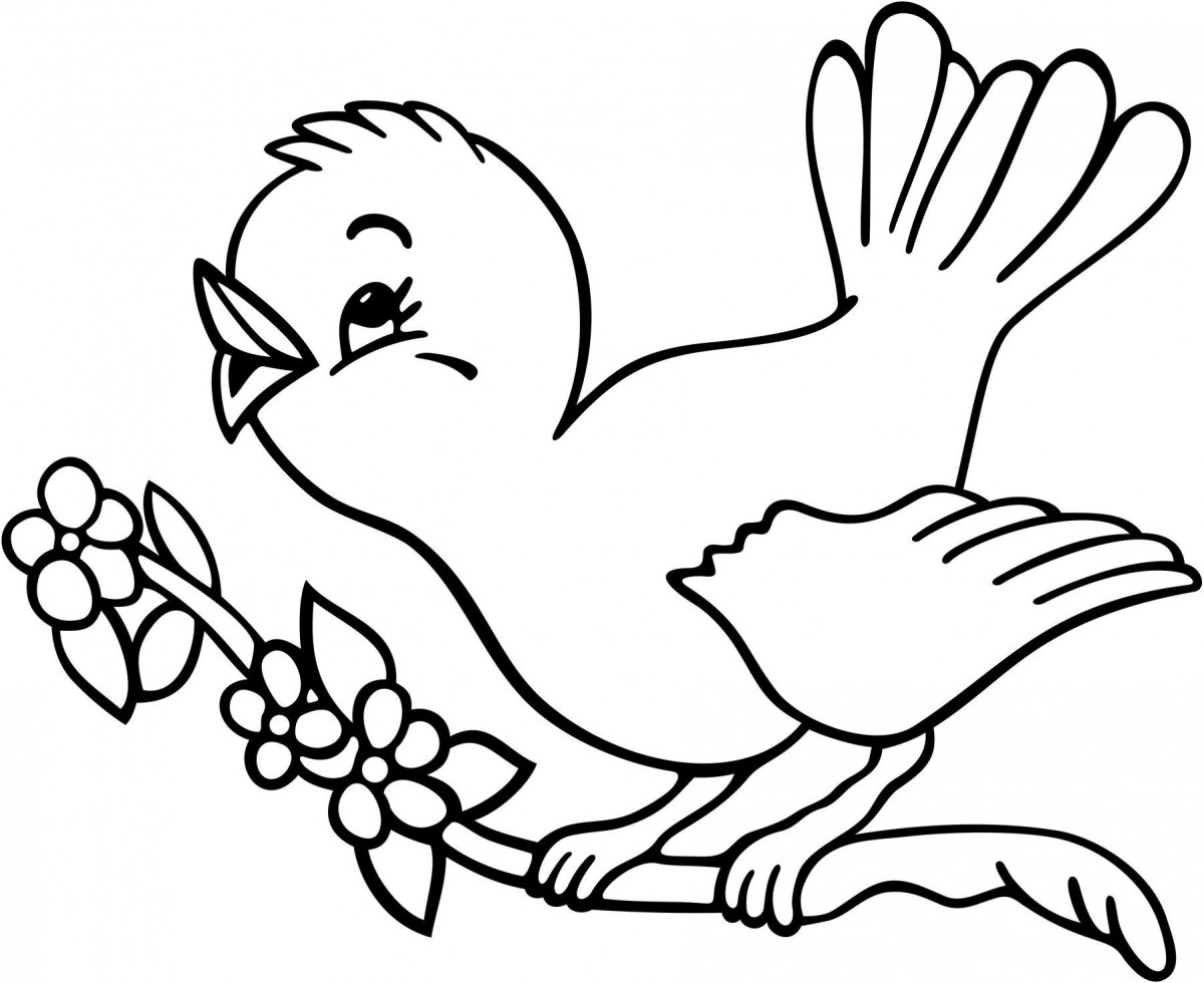 Tuyển tập tranh tô màu con chim đẹp nhất cho bé yêu