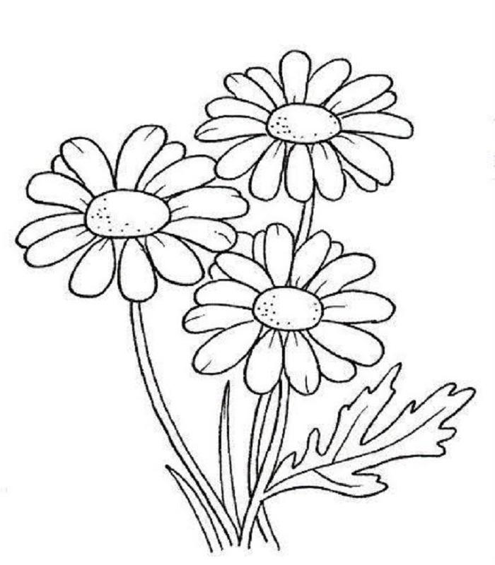 Tuyển tập những tranh tô màu hoa hướng dương đẹp nhất