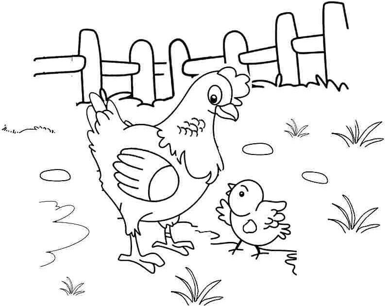 Tổng hợp tranh tô màu cho bé 4 tuổi chủ đề động vật