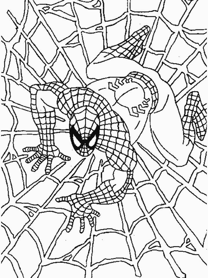 Bộ sưu tập tranh tô màu người nhện đẹp