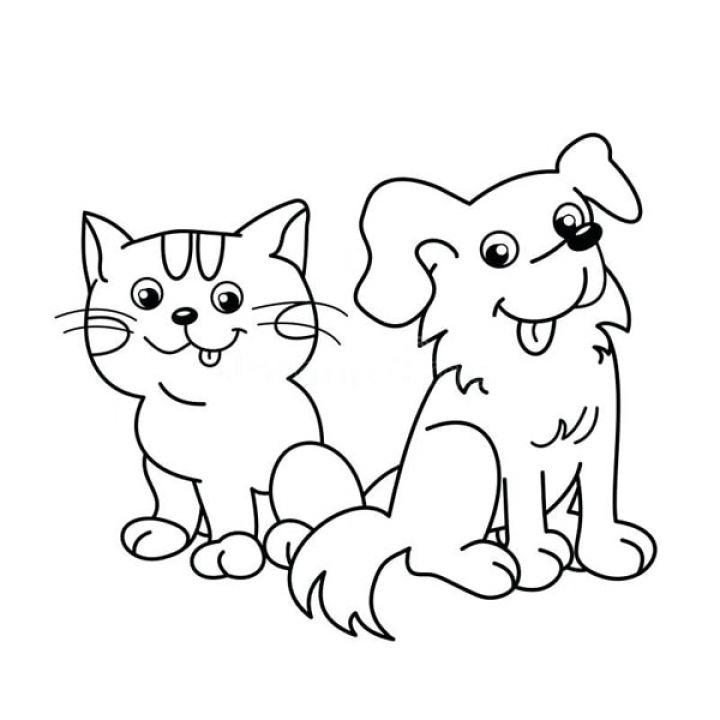 Bộ sưu tập tranh tô màu các con vật nuôi trong gia đình