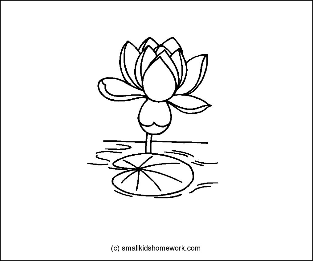 Tuyển tập tranh tô màu hoa sen đẹp nhất cho bé yêu