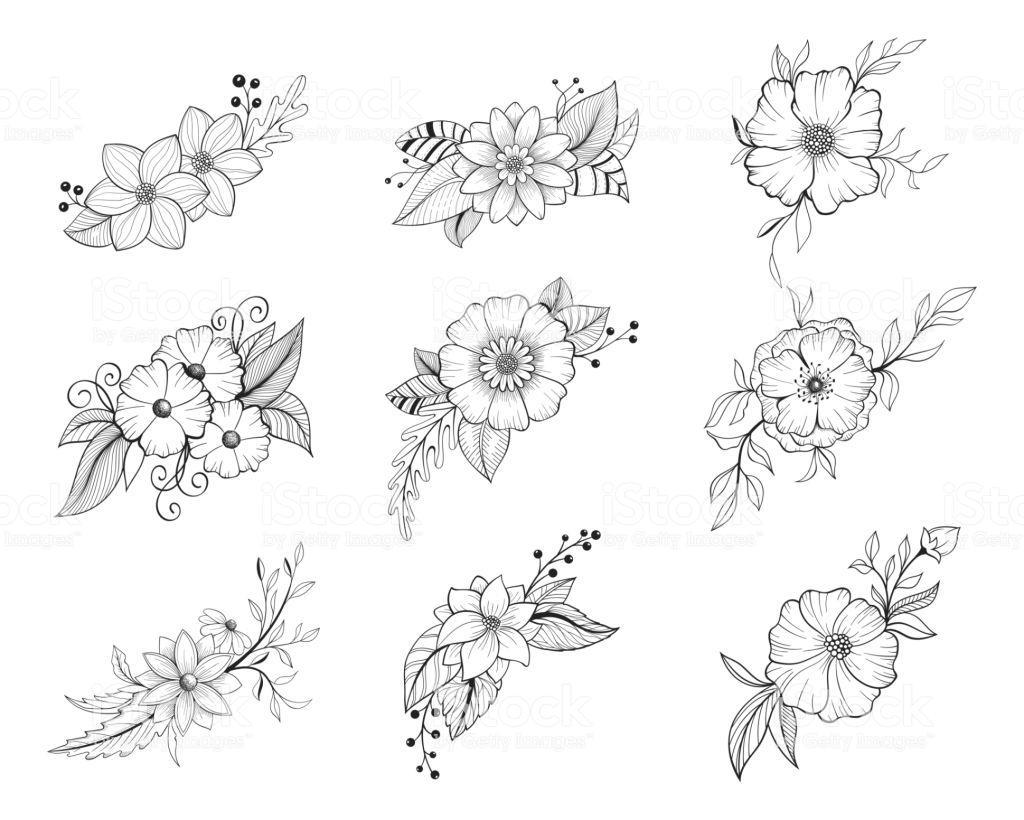 Tổng hợp những bức tranh tô màu hoa mai đẹp nhất cho bé yêu