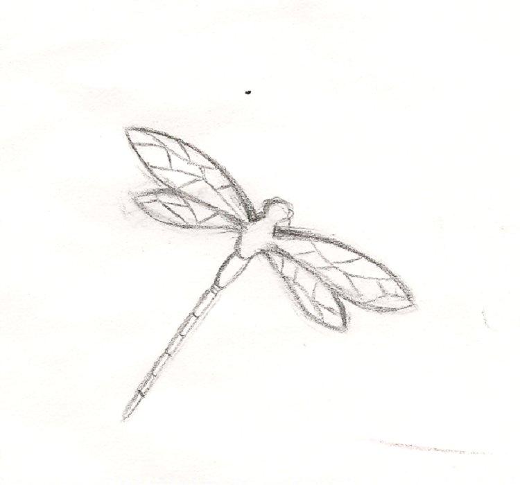 Tổng hợp những bức tranh tô màu chuồn chuồn đẹp nhất cho bé yêu