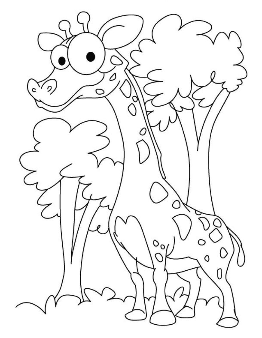 Tổng hợp những bức tranh tô màu con hươu cao cổ đẹp nhất cho bé