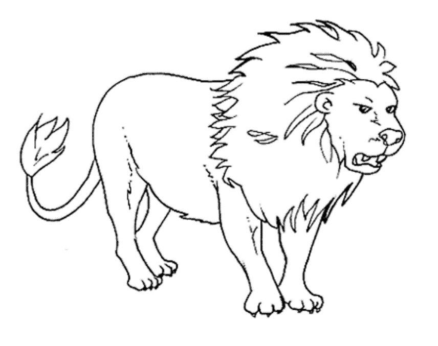 Tuyển tập tranh tô màu Sư Tử cực đẹp